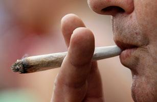 307_Marijuana