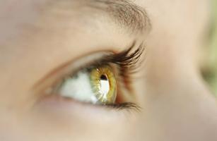 eyesightCropped
