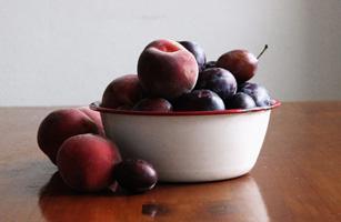 fruitCropped