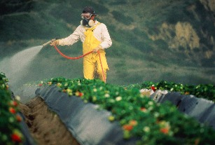 974227-001pesticides4-20-11crop