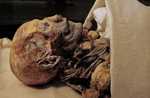 mummyCropped