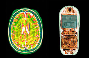 Cell Phone, Brain Scan