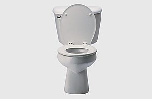 nf_toilet_0809