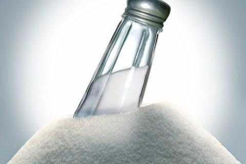 Salt and salt shaker