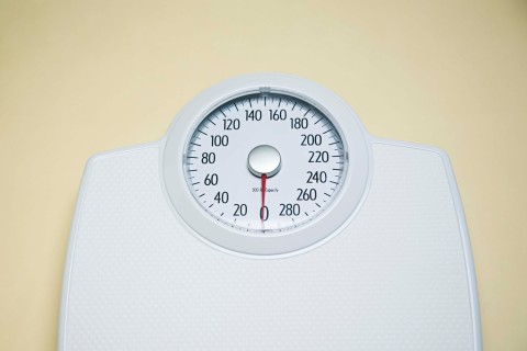 1500_hl_weight_1211