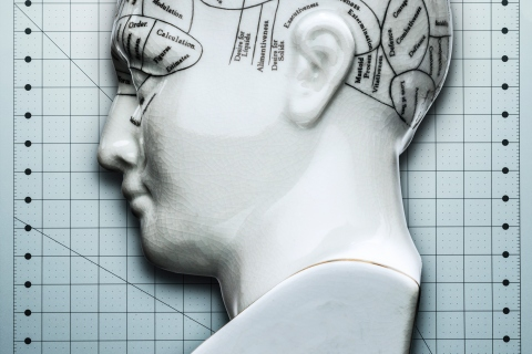 Scientific phrenology head