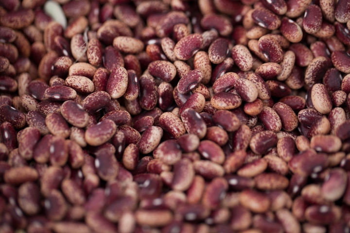scarlet runner bean recipe rancho gordo  sante blog