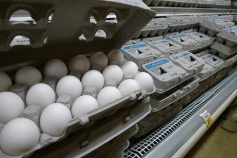Eggs are pictured for sale at a Washington supermarket following an egg recall
